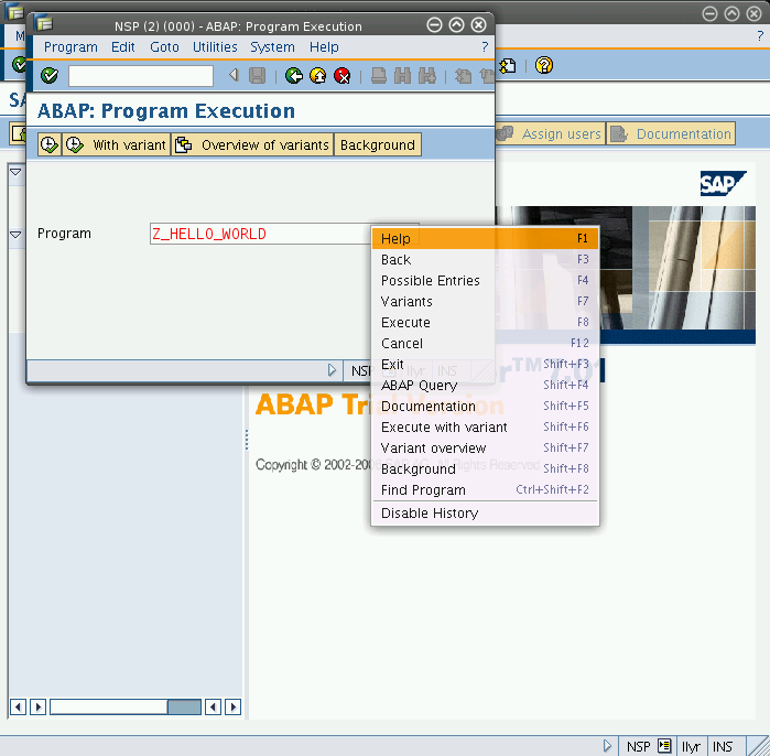 Running SAP GUI for Java under FreeBSD